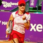 Monica Niculescu profil
